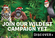 JOIN OUR WILDEST CAMPAIGN YET